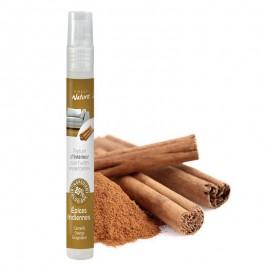 Parfum d'ambiance Épices indiennes - 12ML