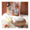 Brumisateur d'huiles essentielles LÉNÉA BOIS - DIRECT NATURE
