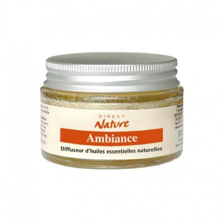 Diffuseur d'huiles essentielles éponge AMBIANCE - DIRECT NATURE