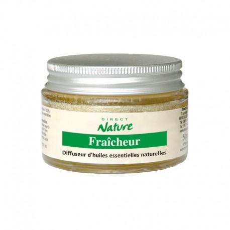 Diffuseur d'huiles essentielles éponge FRAICHEUR - DIRECT NATURE