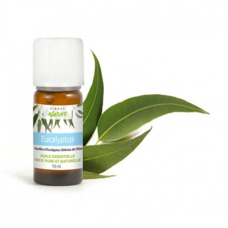 Huile essentielle d'Eucalyptus Globulus - DIRECT NATURE