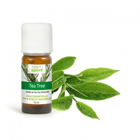 Huile essentielle de Tea tree - DIRECT NATURE